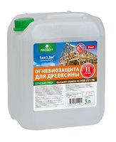 PROSEPT ОГНЕБИО PROF II. Огнебиозащита для древесины, 2 группа.